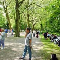 11-ein-schones-boule-gelande-sind-die-wege-im-park