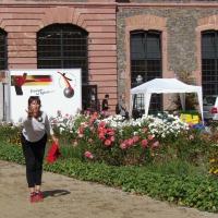 02-3-vereine-waren-die-ausrichter-steinheim-wald-amorbach-und-dieburg