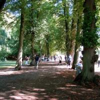 30-im-schattigen-zippel-park